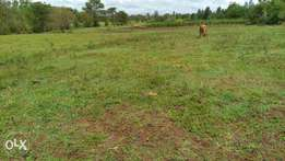 Plots For Sale at Sagana Kirinyaga