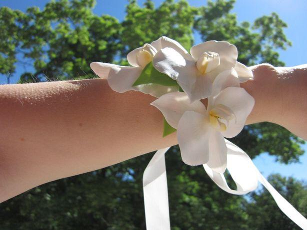 Купить цветы орхидеи харькове на олх, доставка цветов белгород круглосуточно новосибирск