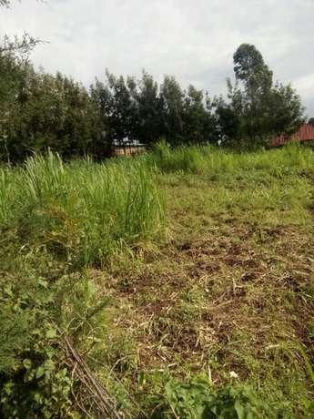 plot on sale _ Located at Ibacho town. Measures 50 feet by 100 feet Kisii Town - image 1