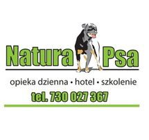 Olsztyn Psi Fryzjer Psi Hotel Szkolenie Strzyżenie Psów I Kotów
