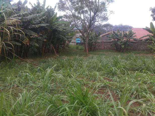 Land for sale at Outspan, Ring road area,Nyeri. Ring Road Estate - image 8