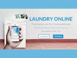 'Laundry Online' business idea needs funding