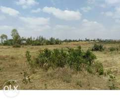 1/4 acre Plot for sale