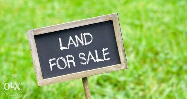 Fully flat 1200m2 land with an unblocked view in tarchich for sale