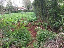 Quarter (1/4) of an acre land plot in Ngong