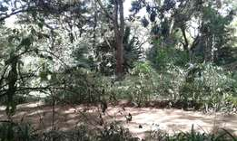 Loresho 10 acre land for sale