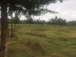 Prime 13.5 Acres with Commercial Trees for Sale in Kitiri, Kinangop