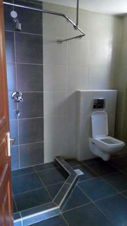 Lovely, Spacious and Executive 3 Bedroom Master Ensuite To Let Parklands - image 5