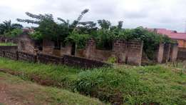 Acres/Hectares of Farmlands for sale in Ibadan Oyo State.