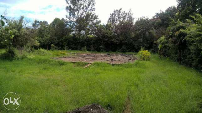 Thome One Avenue Plot for Sale Half an Acre on 3rd Row Kasarani - image 1