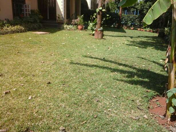 Land for sale in Lavington 1acre Hurlingham - image 1