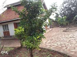 Land for sale at Entebbe
