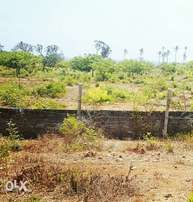 1/2 Acre for Sale Next to Amani Tiwi Beach Hotel