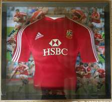 2009 British and Irish Lions tour to South Africa