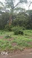 Land For Sale _ One Acre in Kilimani.