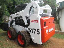 Bobcat for long term lease, hire, and rental Pretoria East - image 2