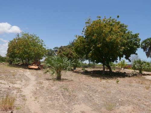 Land for Sale in Malindi. Malindi - image 7