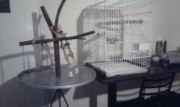 Bird cage and play stand