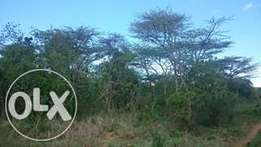 2.5 Acres for sale in Nanyuki, near the Maiyan Developments