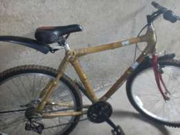 Bamboo Strong bicycle