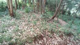 Plots for sale: Njiku area (Banana) 100 by 100 sq ft