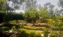 Old kitisuru 3.1 acre land for sale