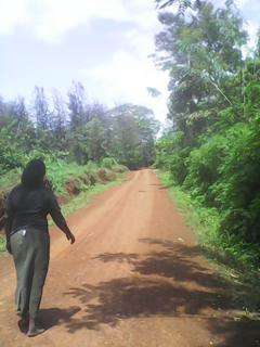 Sale of aquarter piece of land at MUGOYA 200m from the station Embu Town - image 7