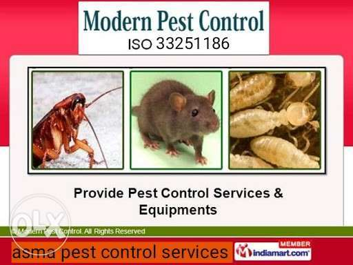 Pest control services safe and safety viruse services available
