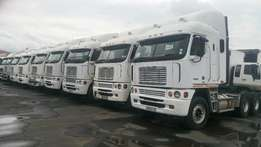 Freightliner Neat and Just Arrived Freightliner Horses Available