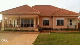 Najjera 3bedrmed stand alone house for rent at 1.5m