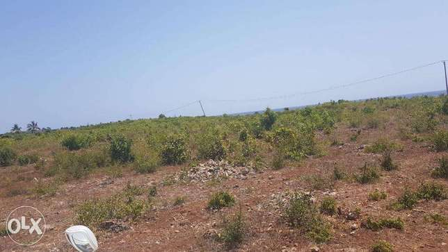 Kikambala-2.5acres,second row from the beach Mombasa Island - image 2