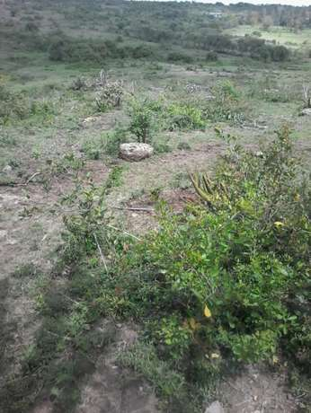 3 and 1/4 acres at Juja farm Mumba area. With a clean Freehold title. Kalimoni - image 5