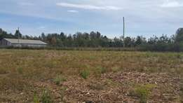 1/2 acre kimumu with title just 350metres from tarmac