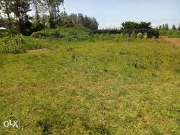 Prime Plots for sale at Kenol Kabati:40*80ft.Ready Title deeds.