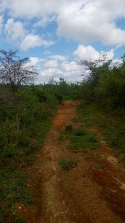Agricultural Land for Sale Ideal for Mangoes and Oranges Farming Mananja - image 3