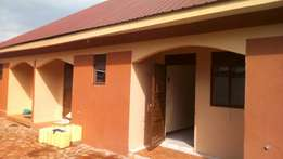 Double room shelf continued house for rent bukoto