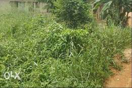 Half plot of land available for sale