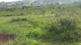 Land on sell in nsasa