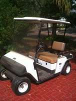 EZGO Electric Golf Cart Two seater