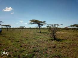 Land for sale at Urithi housing cooperative society