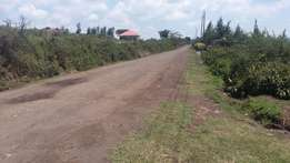 Kenya Safehomes prime plot for sale at ingobor-nakuru