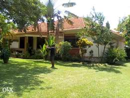 Banglow house for rent