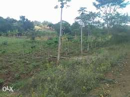 7acres opp Marewa shopping centre with tarmac road