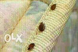 Bed bug and fumigation service in Lagos