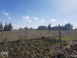 1/4 acre plot. 150 m from Railway line, 300m from Chinese Railway Camp