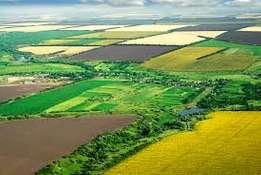 Buyer looking for agricultural land in Joburg or Pretoria