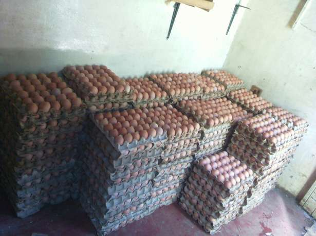 Egg's /wholesale and retail(RUAKA) Ndederu - image 2