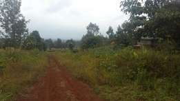 Half Acre in Kiambu,3rd from Tarmac