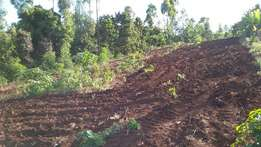 1 Acre of clean Prime Farmland at Kimandi, Kerugoya, Kirinyaga.