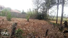 An 1/8 an acre for sale in Kerarapon